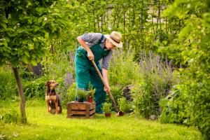 gardening trousers image v2
