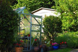 greenhouse in garden main image